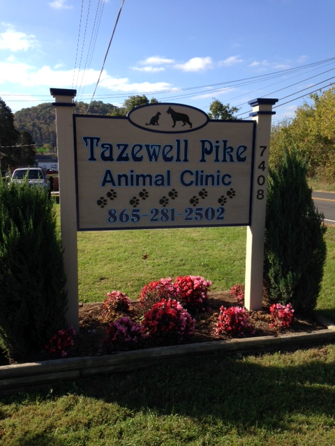 tazewell-vet-1